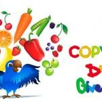 Copy Kids DVD Winner