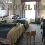 How to Survive Hotel Life