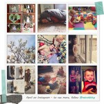 Favorite Instagram Posts: April
