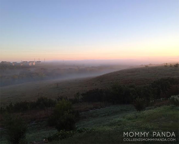 mommy-panda-blog-currently-junction-city-foggy-morning