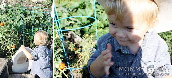 mommy-panda-blog-tiny-swag-cowboy-bean3