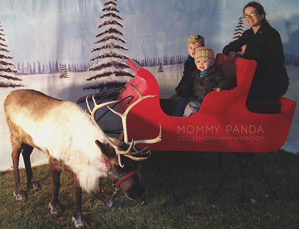 mommy-panda-blog-currently-family-reindeer-fort-riley