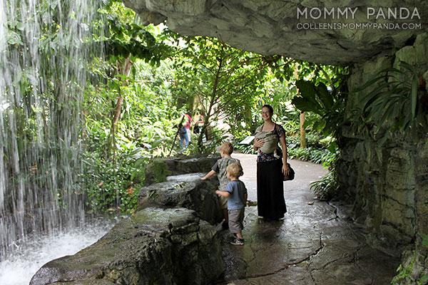mommy-panda-blog-babywearing-missouri-botanical-garden3