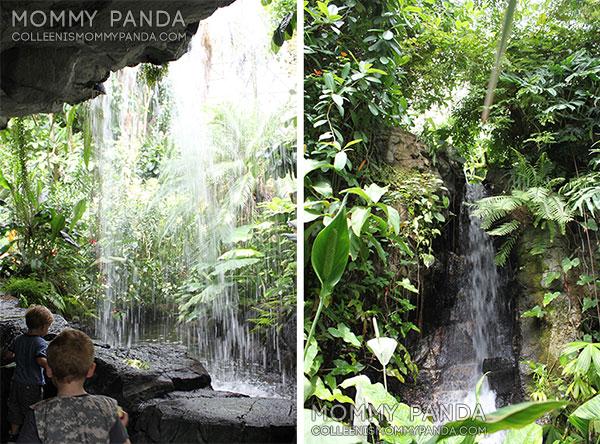mommy-panda-blog-babywearing-missouri-botanical-garden4