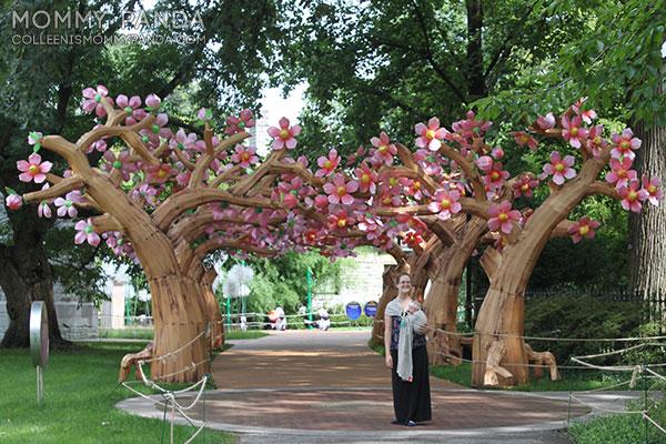 mommy-panda-blog-babywearing-missouri-botanical-garden6