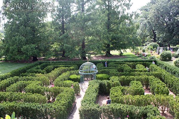 mommy-panda-blog-babywearing-missouri-botanical-garden7